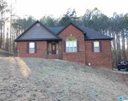 110 Whispering Way, Odenville image
