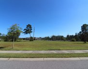 1847 Wood Stork Dr., Conway image