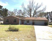 15036 Colley Drive, Tavares image