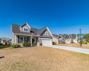 163 Palmetto Green Dr., Longs image