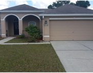 14832 Redcliff Drive, Tampa image