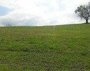220 Pineberry Drive, Vonore image