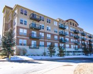 10176 Park Meadows Drive Unit 2101, Lone Tree image