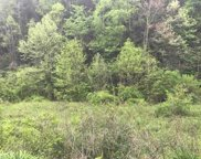 Tract 6 Wilhite Road, Sevierville image