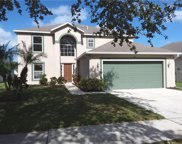 13416 Copper Head Drive, Riverview image