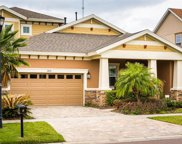 14131 Barrington Stowers Drive, Lithia image