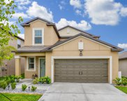 11908 Miracle Mile Drive, Riverview image
