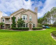 18038 Villa Creek Drive Unit 18038, Tampa image
