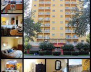 316 8th Street S Unit 303, St Petersburg image