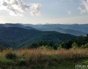 Lot 493 Goldenrod, Blowing Rock image