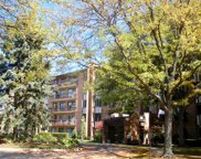 601 Lake Hinsdale Drive Unit 406, Willowbrook image
