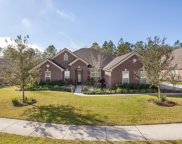 1451 COOPERS HAWK WAY, Middleburg image