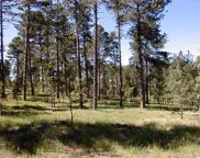Lot 12 Eagle Ridge Drive, Custer image