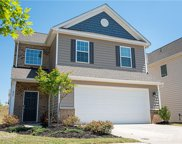 423 Triple Branch  Trail, Fort Mill image