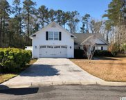 334 Chastain Ct., Murrells Inlet image