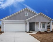 587 Nw Dellcastle Court, Calabash image