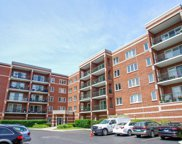 6450 West Berteau Avenue Unit 408, Chicago image