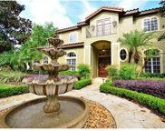 9907 Beaufort Court, Windermere image