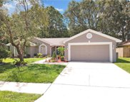 10416 Ashley Oaks Drive, Riverview image