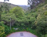 Springwood, Pacifica image