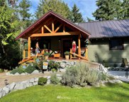 11423 86th Street Ct, Anderson Island image
