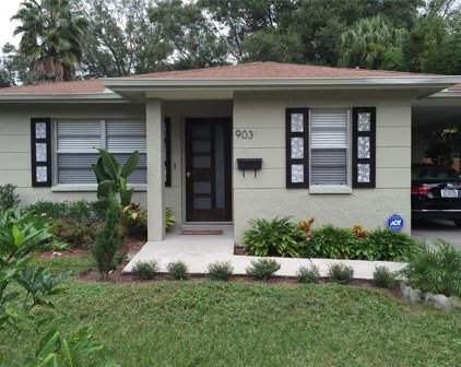 903 W Coral Street, Tampa
