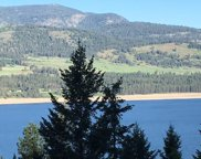 19XX S 25, Kettle Falls image