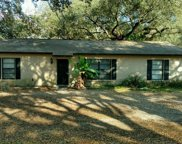 6239 Williams Road, Seffner image