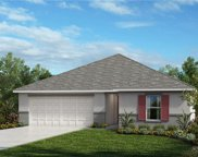 9208 Freedom Hill Drive, Seffner image