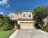 3053 Savannah Oaks Circle, Tarpon Springs image