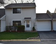 1261 North Wind River Terrace, Palatine image