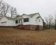 473 Lake Country Dr, Odenville image