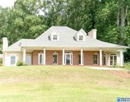 5913 Miles Spring Rd, Pinson image