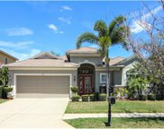 521 Harbor Grove Circle, Safety Harbor image