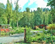 22718 177th St E, Orting image
