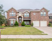 305 Adobe Lilly Court, Mansfield image