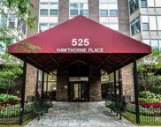 525 West Hawthorne Place Unit 201, Chicago image