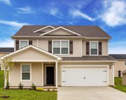 2519 Queen Bee Dr, Columbia image