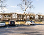 9S070 Lake Drive Unit #202, Willowbrook image