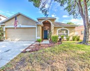9050 Egret Cove Circle, Riverview image