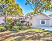 7313 Brookview Circle, Tampa image
