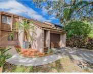6040 River Trace Road, Tampa image