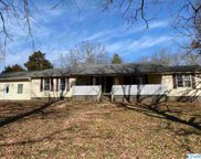 29195 Cedar Acres Drive, Madison image