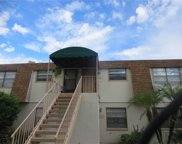 6111 Topher Trail Unit 57C, Mulberry image