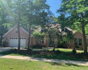 189 Red Maple Way, Niceville image