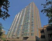 720 West Gordon Terrace Unit 10L, Chicago image