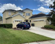 8304 Old Town Drive, Tampa image