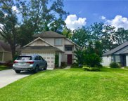 1321 Black Willow Trail, Altamonte Springs image