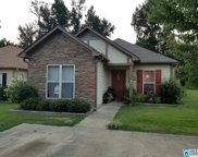 533 Fox Run Cir, Pell City image