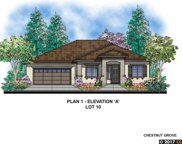 1610 Chestnut Grove Way, Concord image